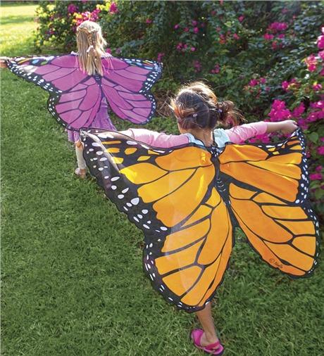 Butterfly Wings Costume Kids